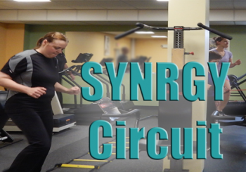 SYNRGY Circuit